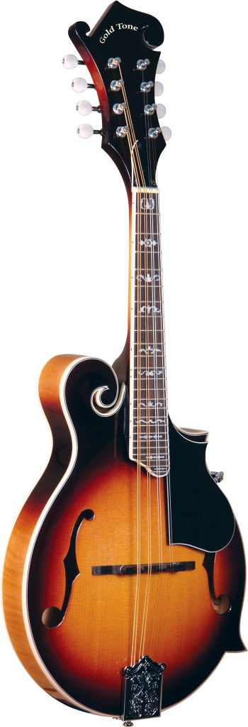 Instruments That Are Easy To Learn Mandolin