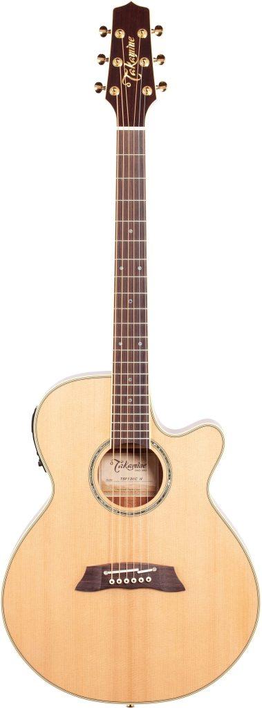 Thinline Electro Acoustic Guitar